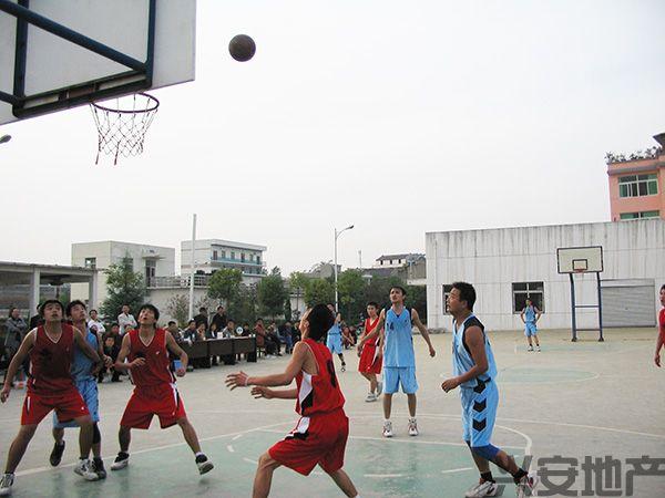职工篮球赛