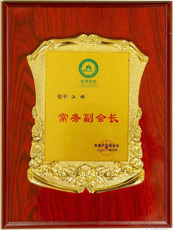 集团执行总裁江炜当选安商总会常务副会长(图2)